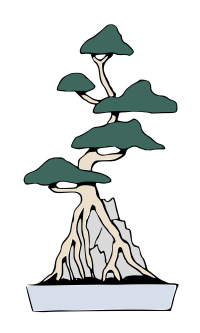 Bonsai_Root-Over-Rock_Style